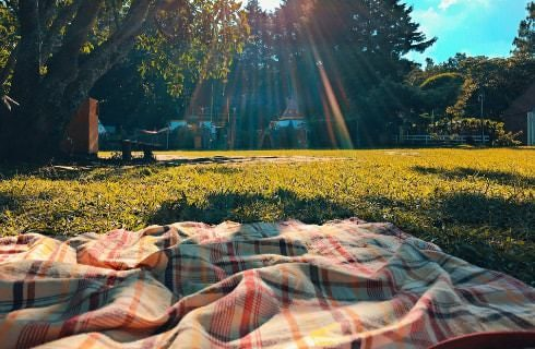 Plaid blanket on green grass with sun shining through the trees